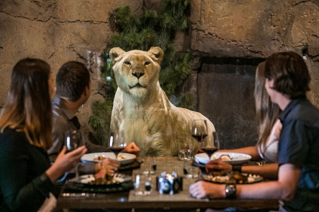 there's nothing quite like sitting down for a three-course dinner in an underground restaurant and having a lion wander ...