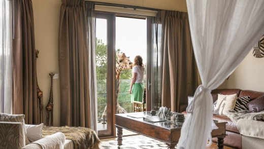 You can feed giraffes from your balcony in the Giraffe Treehouse rooms.
