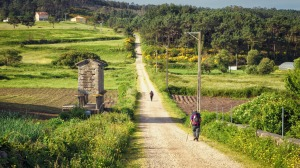 Stacey Alleaume hopes to walk the Camino de Santiago in Europe.
