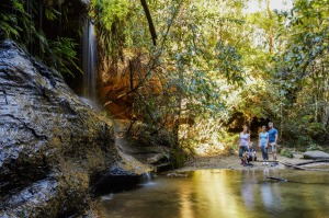The healing qualities of the fresh air and open spaces of the Blue Mountains were recognised more than a century ago.