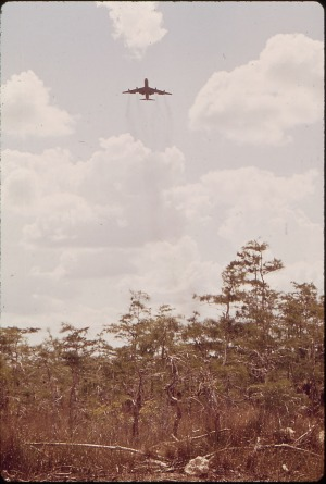 A plane takes off from Everglades Jetport in July 1972.