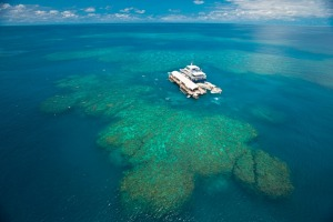The perfect holiday destination, the Great Barrier Reef.