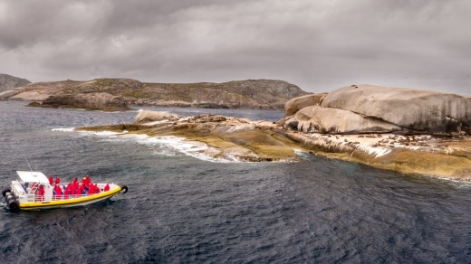Pennicott Wilderness Journeys' amphibious vehicle, the first of its kind in the world, was eight years in the making and ...