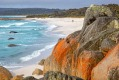Low impact: Camping is free at Cosy Corner in Tasmania's Bay of Fires.