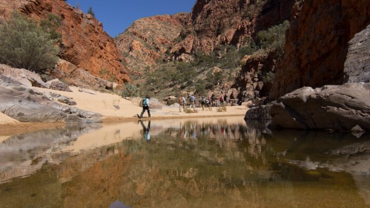Since it opened, the trail has morphed from a favourite local walk to a world-renowned trek with up to 5000 walkers each ...