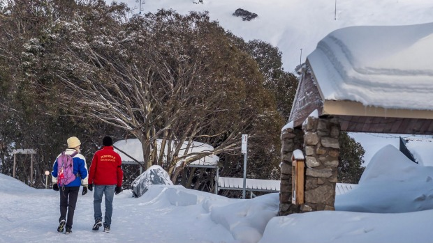 Strong snow falls hit at Falls Creek as lockdown came to an end.