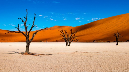 Deadvlei is a salt pan littered with camel-thorn trees that died perhaps 700 years ago.