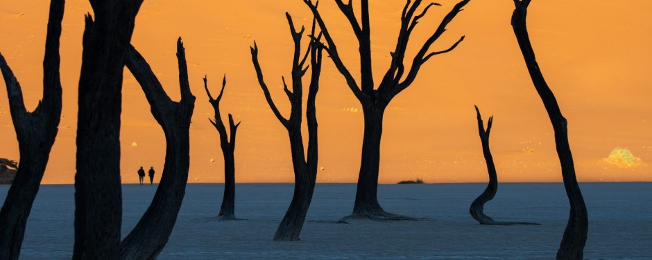 Arrive at Deadvlei five minutes late and you'll miss the most photogenic scene on Earth.