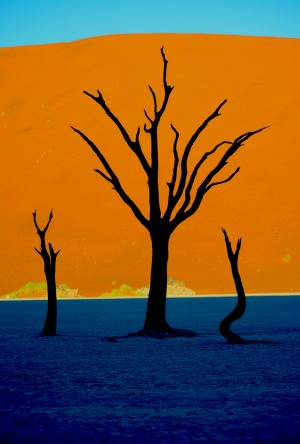 At dawn photos at Deadvlei look like paintings.