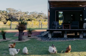 Close to the white sand of Smith's Beach,Barn Hives is an ideal base for exploring the Margaret River region's food and ...