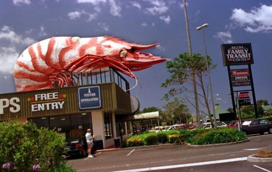 The Big Prawn at Ballina.