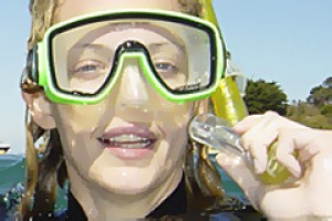 Chill out ... snorkelling with Bayplay Adventure Tours.