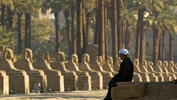 Ancient history ... sphinxes at Luxor Temple.