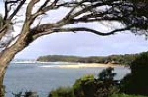 The inlet at Mallacoota