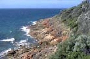 The rugged cliffs near Mornington