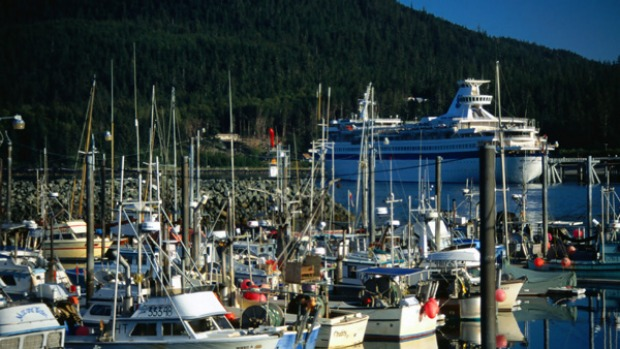 A cruise ship and lots of local craft in the Haines Harbour.