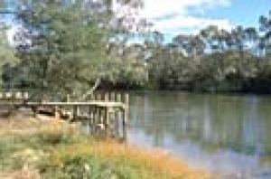 Fishing platform at the New Crossing Place on the Goulburn River