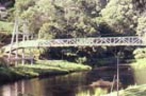 Timber footbridge over Yarra River