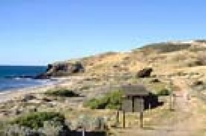 The cliffs at Hallett Cove