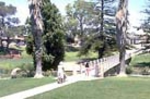 People walking in the park at Strathalbyn