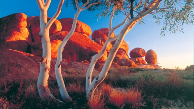 Tennant Creek Northern Territory Travel Guide And Things