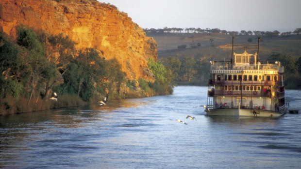 Ebb and flow ... the PS Murray Princess cruises elegantly down the river.