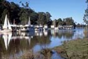 Houseboats at Bulahdelah - a popular entry to the Myall Lakes