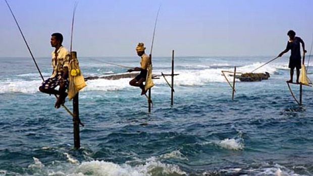 Future perfect ... fishers on stilts at Ahangama, east of Galle.