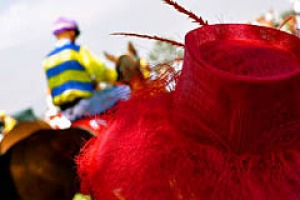 Mounting excitement ... the bright colours of the Albury Gold Cup.