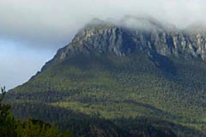 In season ... the view of Mount Murchison from Tullah.