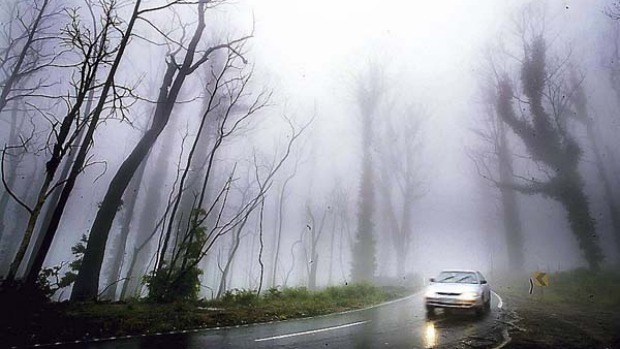 Out of the gloom ... the hardest-hit areas, such as Kinglake, need visitors.