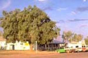 The pub and main street in the tiny settlement of Muttaburra