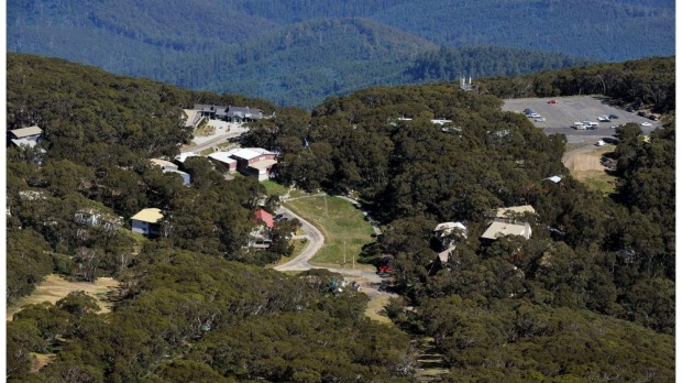 The Mount Baw Baw Alpine Resort board has appointed Belgravia Leisure to manage the troubled resort for the next 12 months.