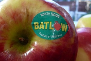 Bonza is the fantastic local (Batlow 1951), mid season apple which is so reliable year after year