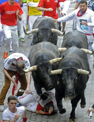 A reveller falls in front of  the bulls during the last bull-run of the San Fermin Festival.