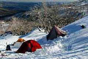 Back country survival ... tents pitched in the snow in Kosciuszko National Park.