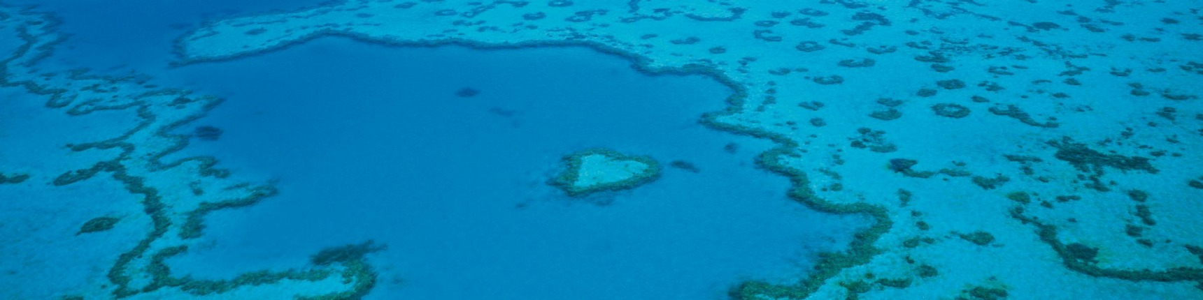 Whitsundays reef australia