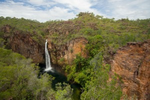 Northern territory darwin waterfall bush